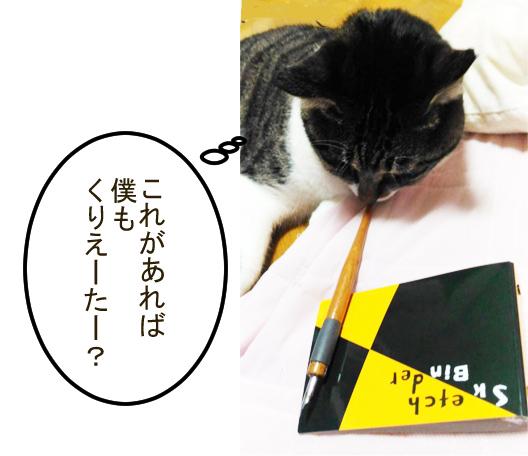 大福丸と画用紙リーフのバインダー2