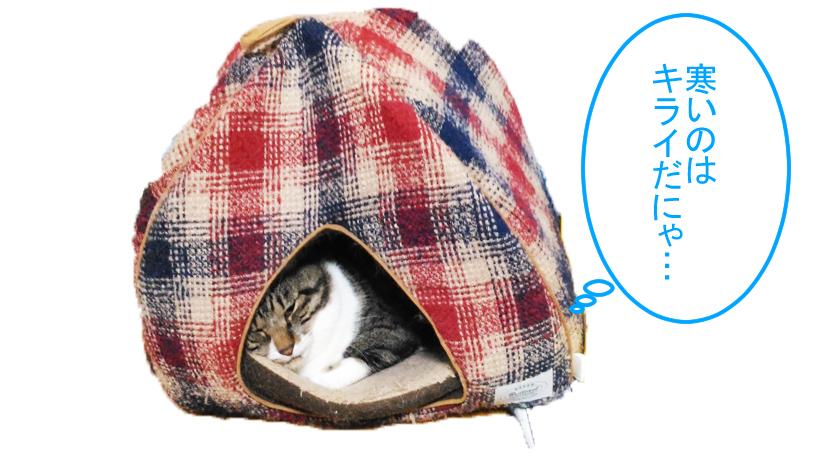 テントの中に引きこもる大福丸