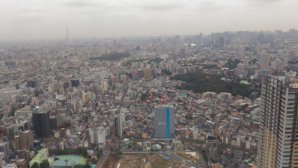 展望台から見える風景