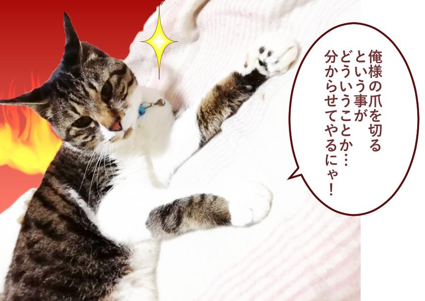 大福丸「俺様の爪を切るという事がどういう事か…分からせてやるにゃ!」