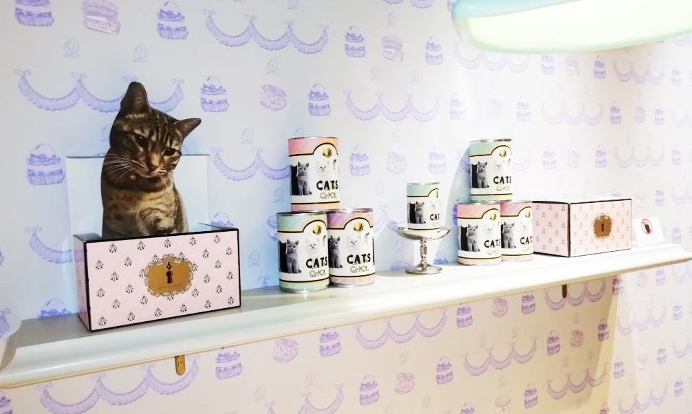 店内の猫装飾4