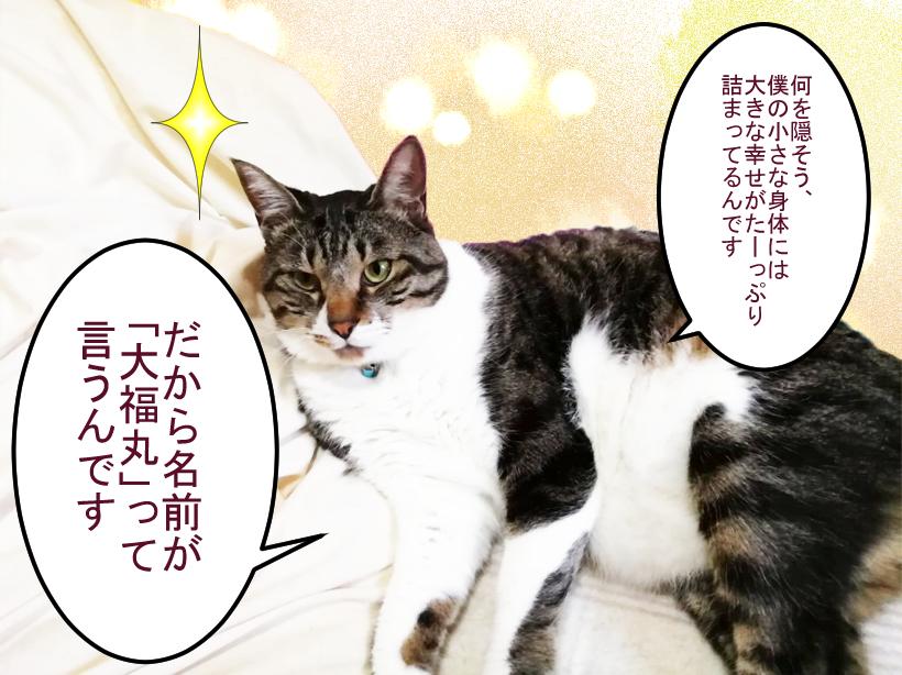 大福丸「僕の小さな身体には大きな幸せが詰まってます」