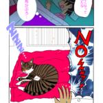 猫漫画32話「占領大福」