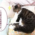 大福丸「どうも! この家の支配者です」