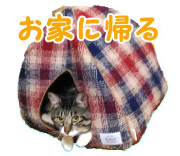 大福丸「お家に帰る」