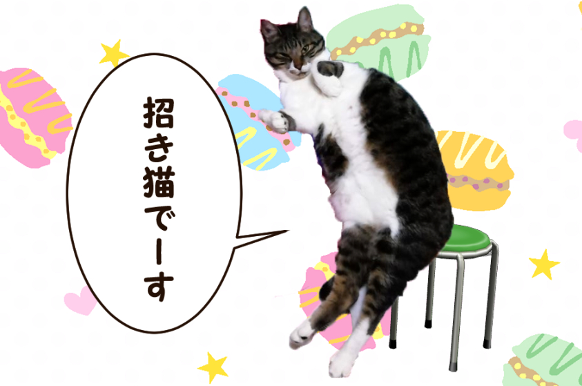 大福丸「招き猫でーす」