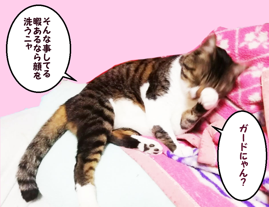 大福丸「ガードにゃん? そんな事してる暇あるなら顔を洗うにゃ」